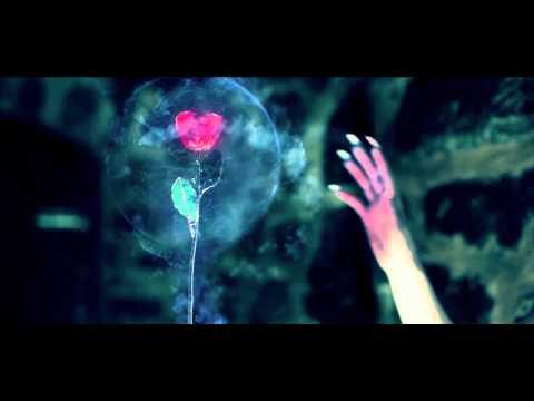 Lights (Official Video) | Klaypex