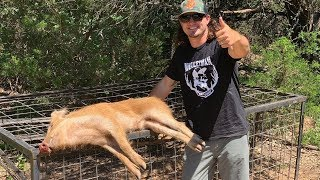 Trapping WILD HOGS!! {Catch Clean Cook} Hog Soup!!