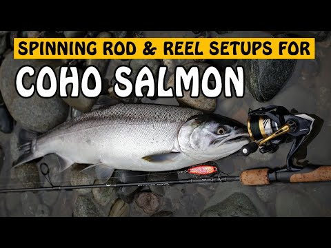 COHO SALMON SPINNING SETUP! My Salmon Spincasting Setup Update | Fishing With Rod