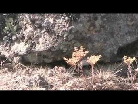 Scablands of Eastern Washington