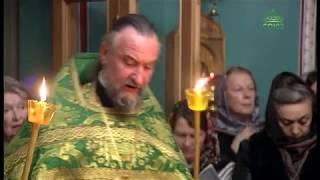 Святые мощи преподобного Арсения Коневского в Санкт-Петербурге