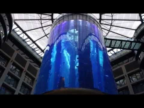 World's Largest Free Standing Aquarium