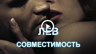 видео Гороскоп совместимости Лев на 2015 год