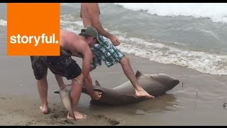 Man catches shark off North Carolina coast