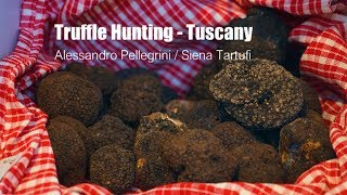 Truffle Hunting in the Tuscany - by Alessandro Pellegrini
