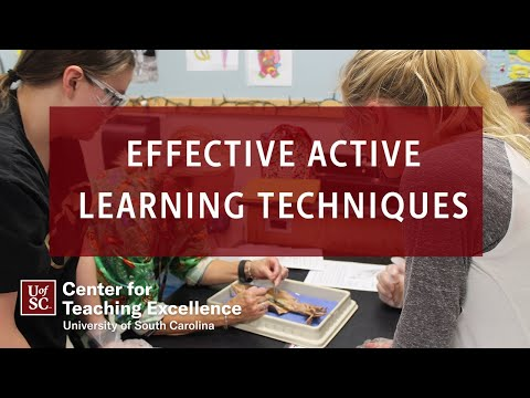 Effective Active Learning Techniques