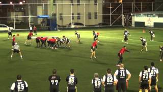 PFL GORILLAZ VS RED SHARKS SEMANA 11 2014   2015