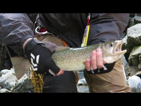 20160811-14山形県��岩魚釣り