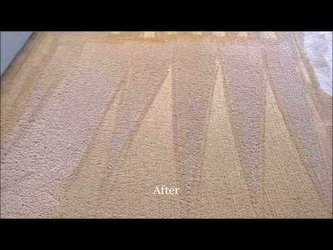 Dry Carpet Cleaning Demonstration