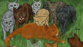 Коты-Воители смерть Огнезвёзда ( реакция Крутобока ) - Wolf in Seep's clothing ( Заказ )
