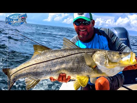 CRAZY HUGE DEEP WATER SNOOK FISHING!! - OFFSHORE FLORIDA ACTION - DEEP SEA WRECK FISH