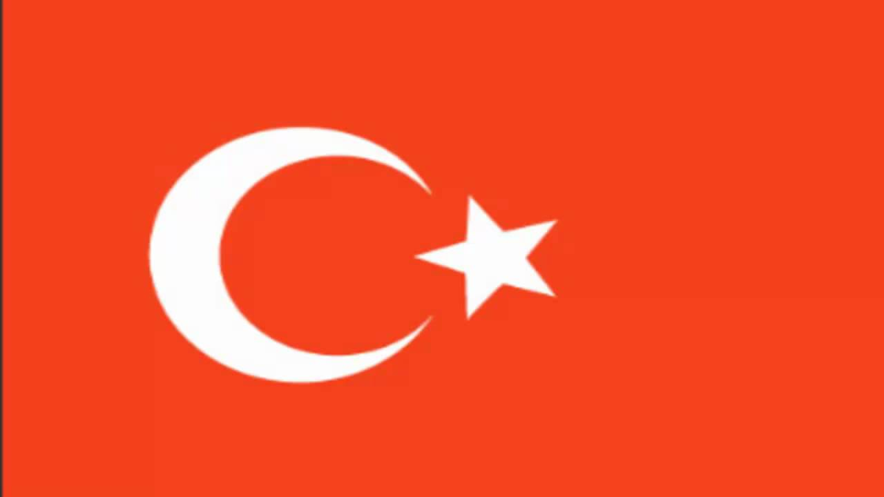 Image result for turkey flag
