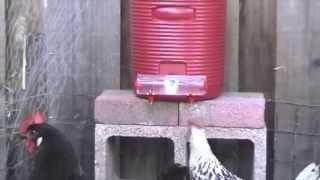 BriteTap Chicken Waterer User Instruction Manual