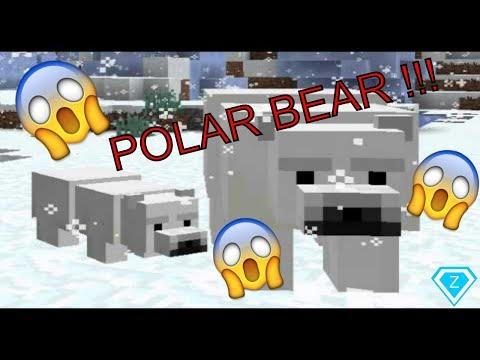 I SAW A POLAR BEAR!! // Minecraft Survival #1