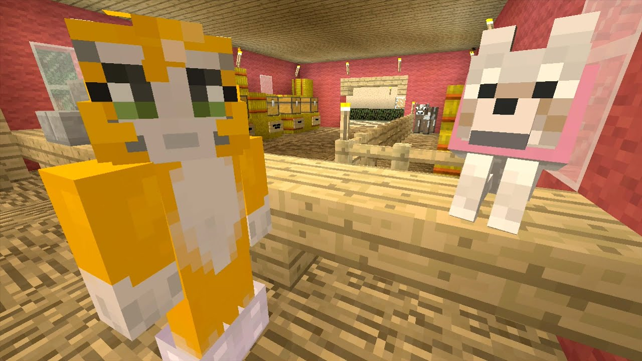Building Time Stampy Cat