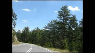 Road through pine forest - near aromanian villages Perivoli and Avdhela in Greece