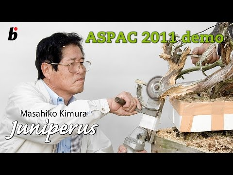 ASPAC KIMURA DEMO 2011