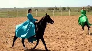 Презентация конного завода ''Карат''. Обзор от Урбан.kz