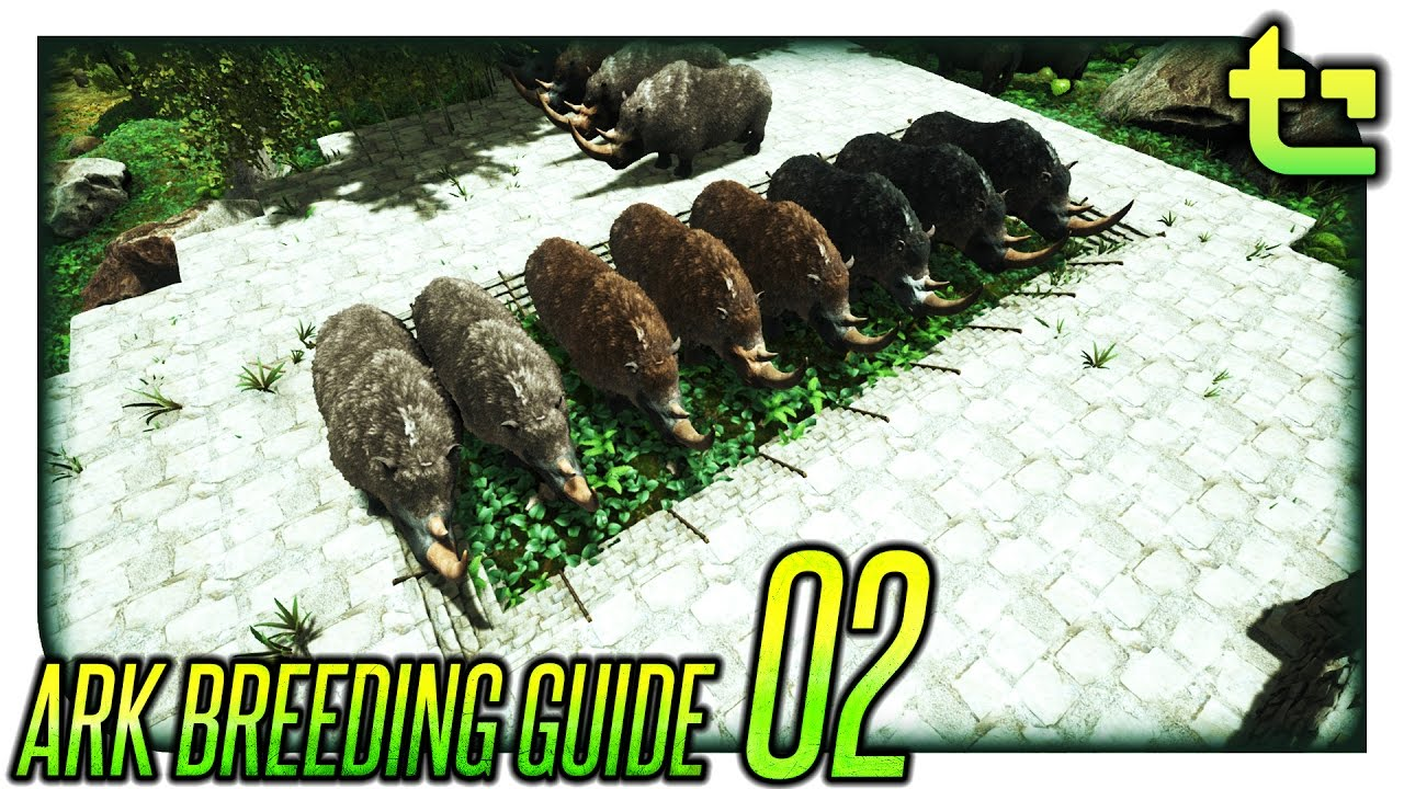Ark Breeding || How To - Breed for Stats || TimmyCarbine