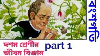 বংশগতি#class ten#life science part 1 in bengali