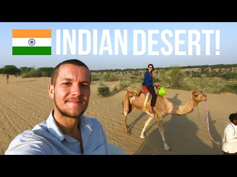 The BEST Day In INDIA! 🇮🇳 Experience of a Lifetime