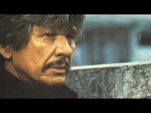 """AMOR Y BALAS"" (1979) ""LOVE AND BULLETS"" ( Charles Bronson ) - ""EN ESPAÑOL"""