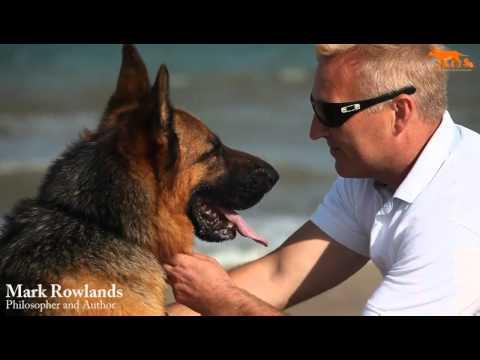 Le philosophe et le loup : interview de Mark Rowlands