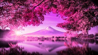432 Hz Reiki Music For HEALING | Cleanse Negativity & Heal The Past | Emotional Healing
