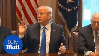 President Trump pushes for bipartisan bill on immigration reform - Daily Mail