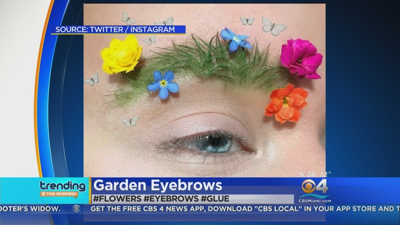 Trending: Decorative Garden Eye Brows