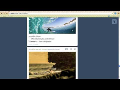 Reblogging    Tumblr tip!