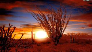 Native American Music: Cheyenne - Sun of  the desert
