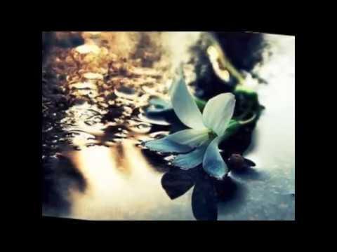 Mehmet Nuri Parmaksız Şimdi Ölsem Şiiri-Okuyan: Nermin Girisit