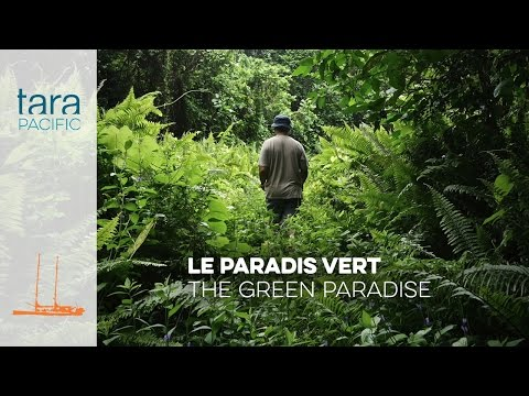 Tara Pacific Le paradis vert  The green paradise