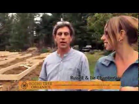 Bodhi Tree Organics
