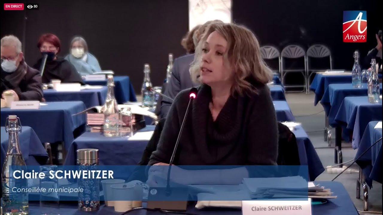 Conseil municipal - 25 janvier 2021 - Féminisation des noms de rue