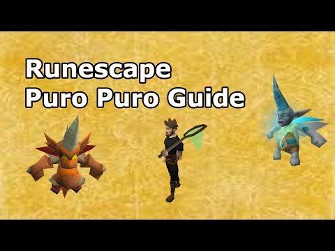 Runescape Puro Puro Guide