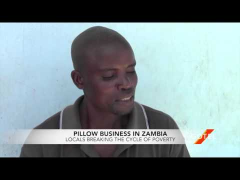 Small Scale Pillow Business In Lusaka