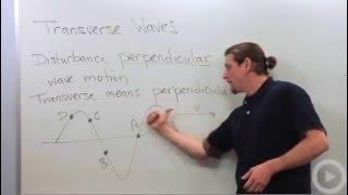 Transverse Waves - Physics tutoring video on transverse waves