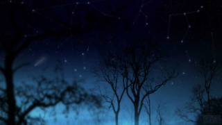Aesthetic/関山藍果の動画