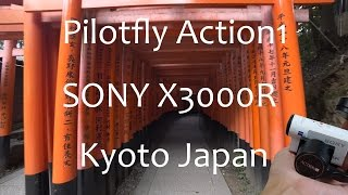 Pilofly Action1 SONY X3000R (京都伏見稲荷大社 Fushimi Inari Shrine Kyoto )4K