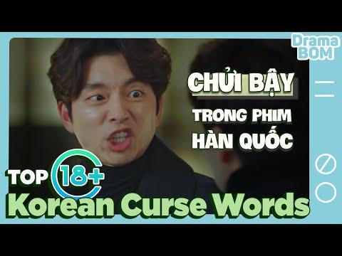 KOREAN CURSE WORDS in KDrama | Dramaholic's Dictionary Ep.2