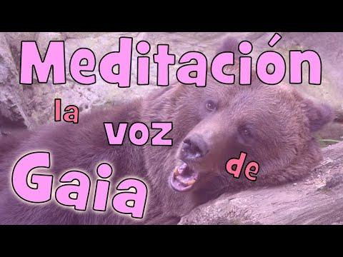 meditación-guiada-de-10-minutos
