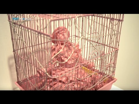 Showcase: Yayoi Kusama on display in Tokyo, Washington DC and London