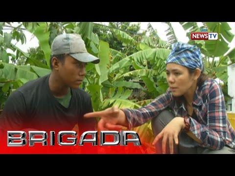 Brigada: Buhay ng mga sakada, sinilip ng 'Brigada'