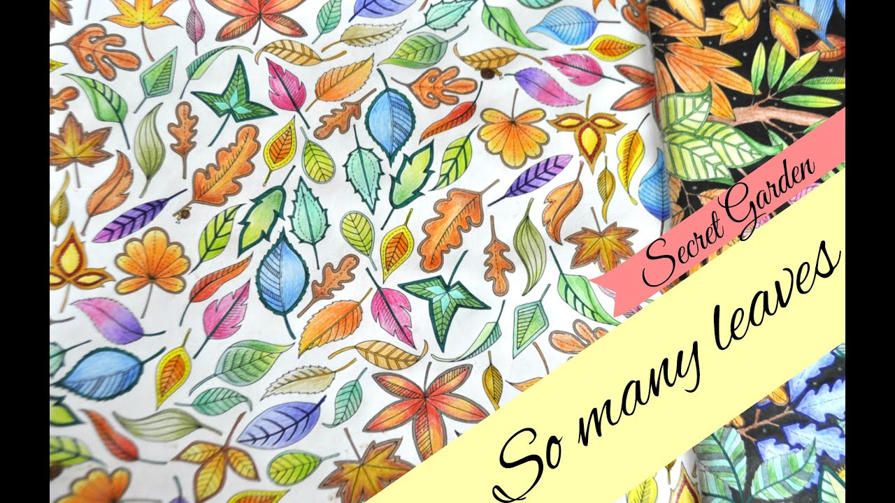 secret garden coloring book so many leaves jardim secreto youtube - My Secret Garden Coloring Book