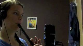 The Lonesome Boatman - Irish Tin Whistle