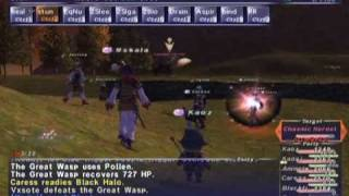 FFXI NM Saga #251: Chasmic Hornet NM [Full Battle]