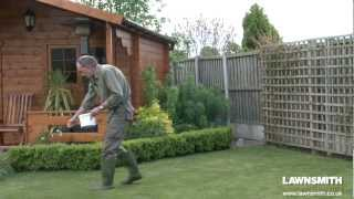 How to Over Seed a Lawn after Raking or Scarifying