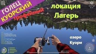Русская рыбалка 4 озеро Куори Трофейный голец куорский Kuori Char
